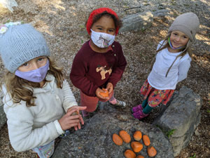 Fund for Mountain Laurel Waldorf School